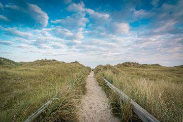 Weg zum Strand von Martin Wasilewski