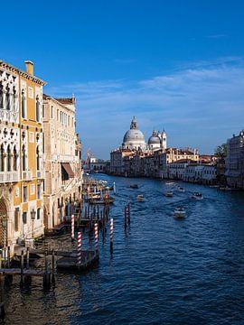 Blick auf die Kirche Santa Maria della Salute in Venedig, Italien von Rico Ködder