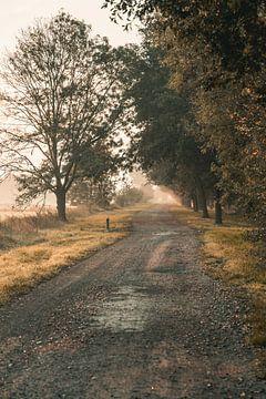 Le chemin sur Joel Layaa-Laulhé
