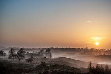 Landschafts-Seifendünen von David Lawalata