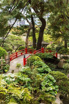 Japanse brug sur Schram Fotografie