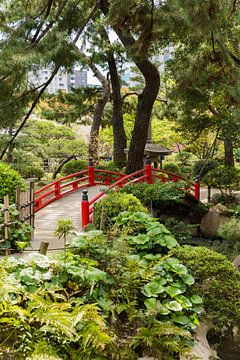 Japanse brug van Schram Fotografie