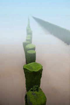 Golfbreker in de mist aan het strand van de kust in Zeeland van