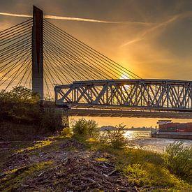 Bommelse brug van Jochem van der Blom