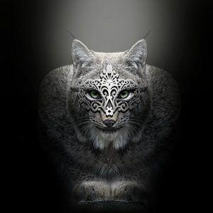 Lynx van