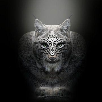 Lynx von Götwin van Bergen