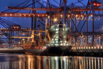 Kleines Containerschiff am Burchardkai von Sabine Wagner