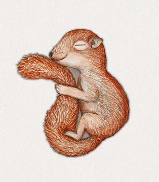 Eichhörnchen im Winterschlaf von Bianca Wisseloo