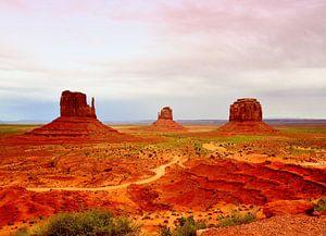 Monument Valley (USA) van Véronique Termoshuizen