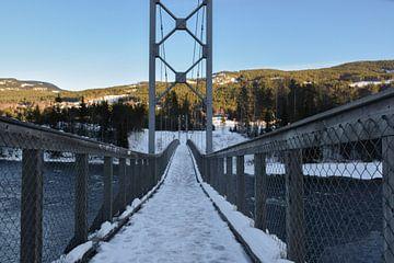 Verschneite Brücke über den Fluss von Sander Hekkema