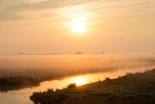 Weiland bij sfeervolle zonsopkomst van