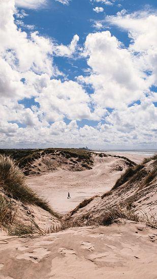 Strand & duinen, Bloemendaal aan Zee