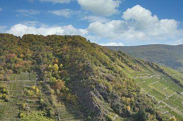 Wijngebied Ahrdal van Peter Eckert