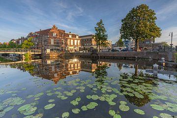 Stadtbild, Leiden von Carla Matthee