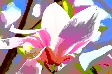 Magnolia ! van De Rover