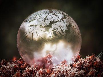 Gefrorene Blase #4 von Lex Schulte
