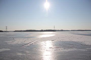 Bevroren Weerwater in Almere van Joan Plaatsman