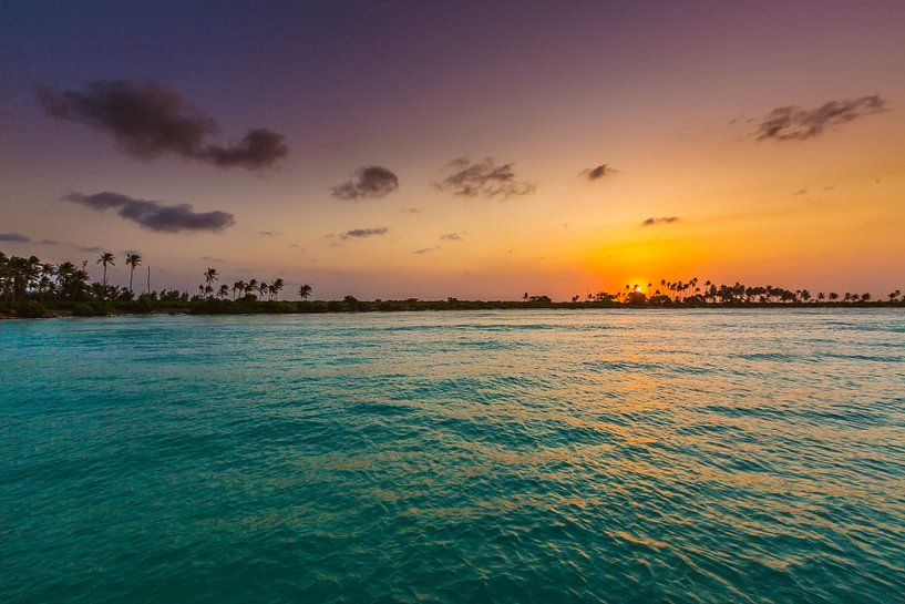 Zanzibar sunset van Andy Troy