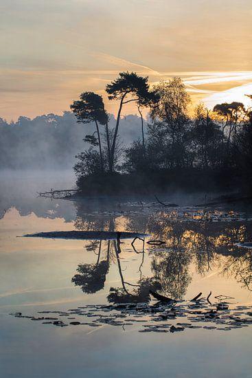 Oranje-blauw zonsopgang tot uiting in een mistige meer met schiereiland