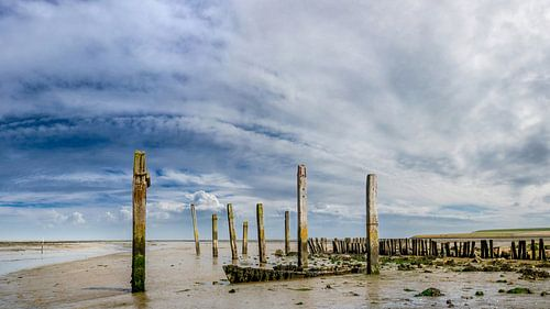 Haven van Sil - Texel sur