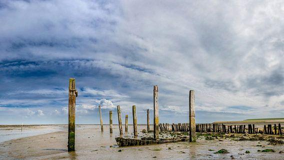 Haven van Sil - Texel