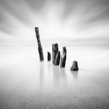 Die letzten Sechs (b/w) von Florian Schmidt