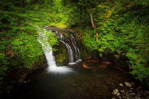 Waterval in Columbia river gorge, Oregon van