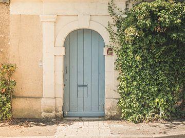 Porte ancienne avec plante grimpante en France sur Art By Dominic