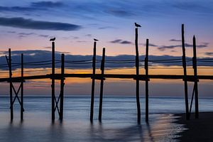 Zonsopgang op Texel van