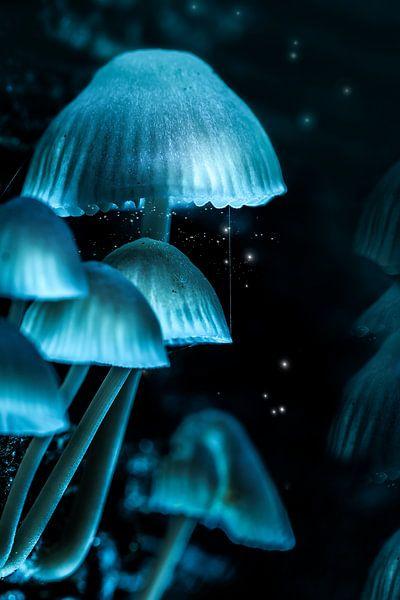 Fantasy forest van FotoSynthese