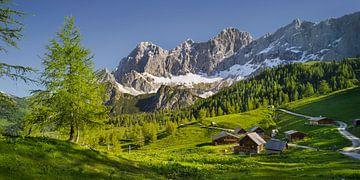 Alpensommer III von Rainer Mirau