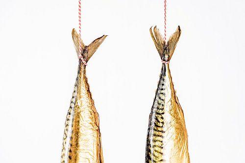 hangende makrelen staarten