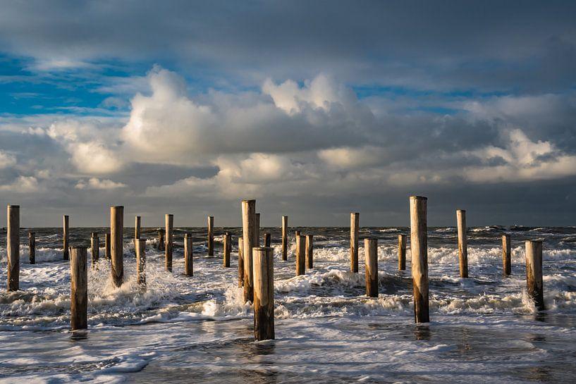 Palendorp Petten in de zee van Mirjam Boerhoop - Oudenaarden