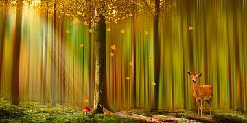 Reh im Herbstwald von Monika Jüngling
