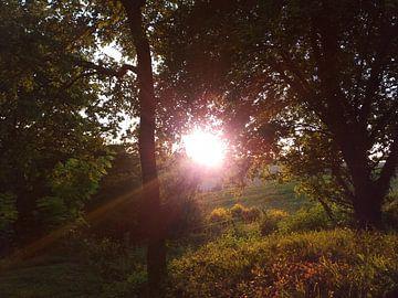 Zonsondergang Frankrijk, Sunset France von