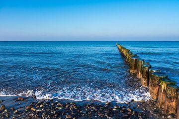 Baltic Sea coast in Graal Mueritz, Germany van