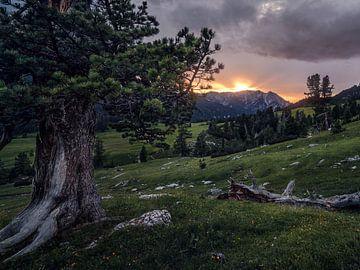 Sonnenuntergang in Südtirol von Thomas Weber