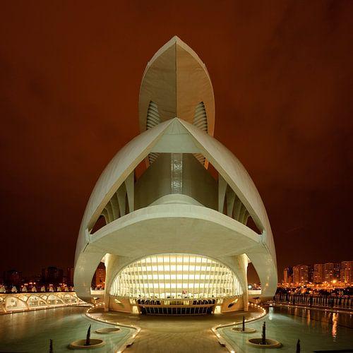 Santiago Calatrava, Palau De Les Arts, Valencia van Dirk Verwoerd