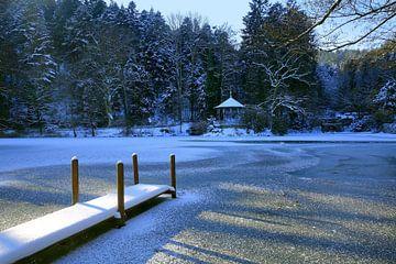 Waldsee Freiburg im Winter von Patrick Lohmüller
