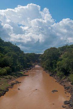 Ethiopië: Natuurgebied (Chencha) van Maarten Verhees