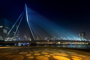 Erasmusbrug Rotterdam sur Peter Bolman