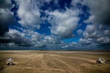 strandkunst van Frans Scherpenisse