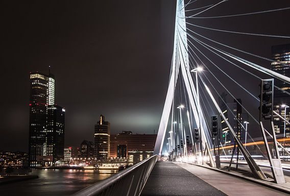 Langs de Erasmusbrug in Rotterdam