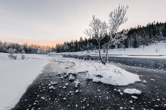 Bevroren Rivier - Vesterålen, Noorwegen van Martijn Smeets