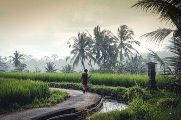 Fischer auf Bali von SomethingEllis