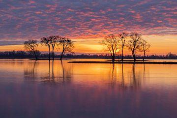 Sonnenaufgang Reeuwijkse plas von Boudewijn Rietveld