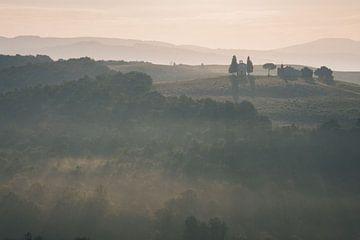 Morgendlicher Nebel von Kimberley Jekel