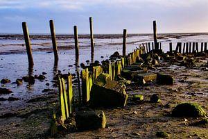 haven op Texel  van