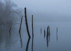 Het meer in de mist van