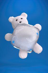 Eisbär Wortspiel von Jörg Hausmann